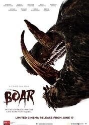 Кабан / Boar