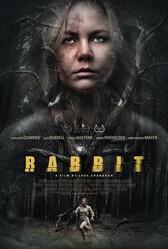 Кролик / Rabbit