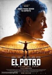 Эль Потро, рождённый любить