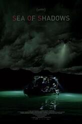 Море теней / Sea of Shadows
