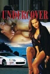 Прикрытие / Undercover Heat