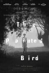Раскрашенная птица / The Painted Bird