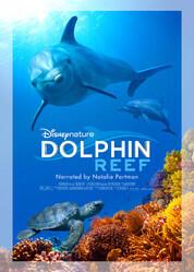 Дельфиний риф / Dolphin Reef