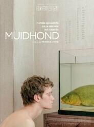 Линь / Muidhond