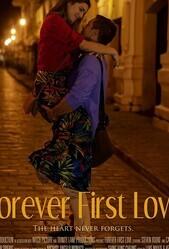 Первая любовь навсегда / Sage of Time (Forever First Love)