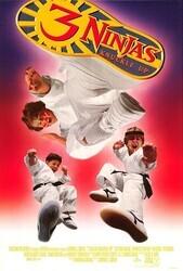 Три ниндзя: Костяшки вверх    / 3 Ninjas Knuckle Up