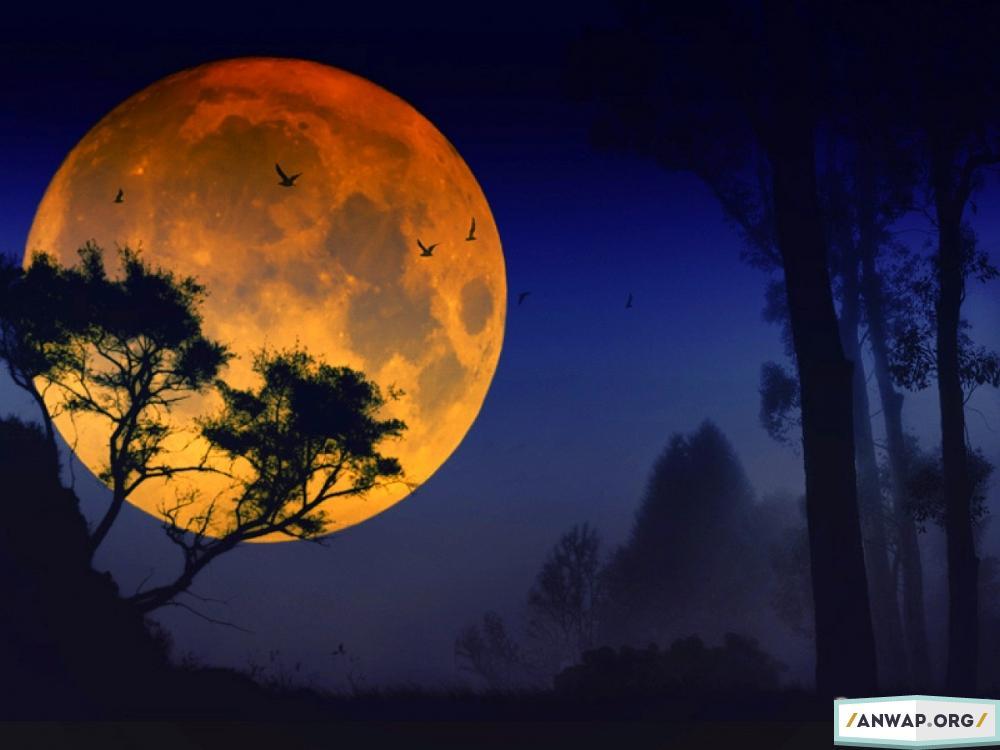поэтому рожденые 2 июля луна условиях повышенной