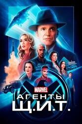 Щ.И.Т.  / Agents of S.H.I.E.L.D.